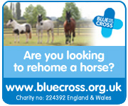 Blue Cross Burford (Worcestershire Horse)