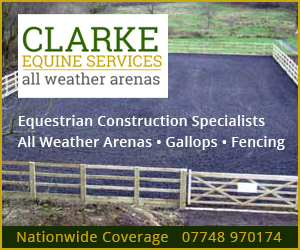 Clarke Equine Services 2019 (Worcestershire Horse)