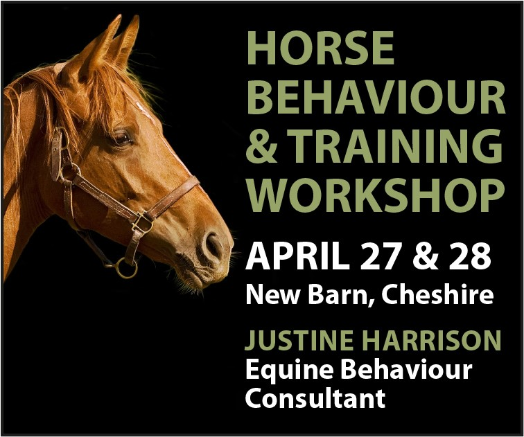 Justine Harrison Workshop April 2019 (Worcestershire Horse)