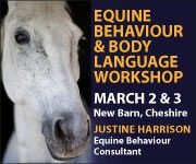 Justine Harrison Workshop March 2019 (Worcestershire Horse)